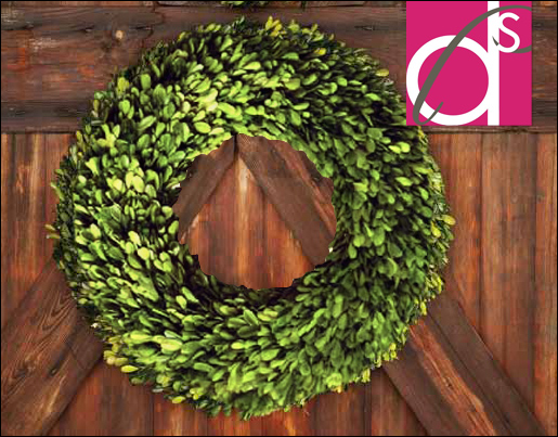 Preserved-Boxwood-Wreath-16-inch