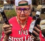 Boosie BadAzz Ft. Kevin Gates & Others – 1/15 Street Life
