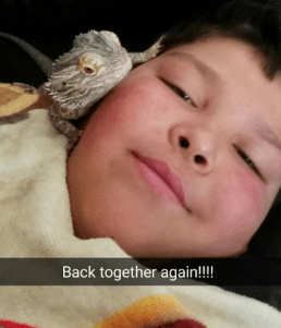 Rico Orozco, 11, cuddling with his bearded dragon Spike after he was brought home Sunday night. (Photos courtesy Casey Bolex)