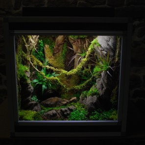 Terrarium plug and play 60/45/60