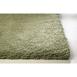 Small Of Green Area Rugs