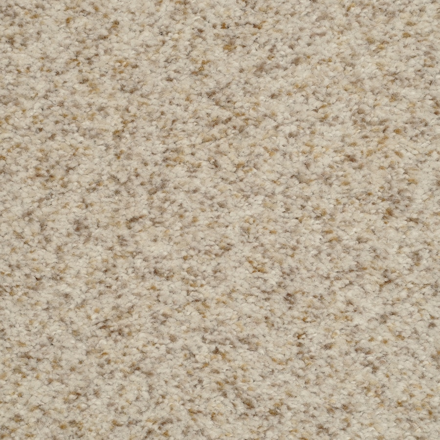 Fullsize Of Stainmaster Carpet Reviews