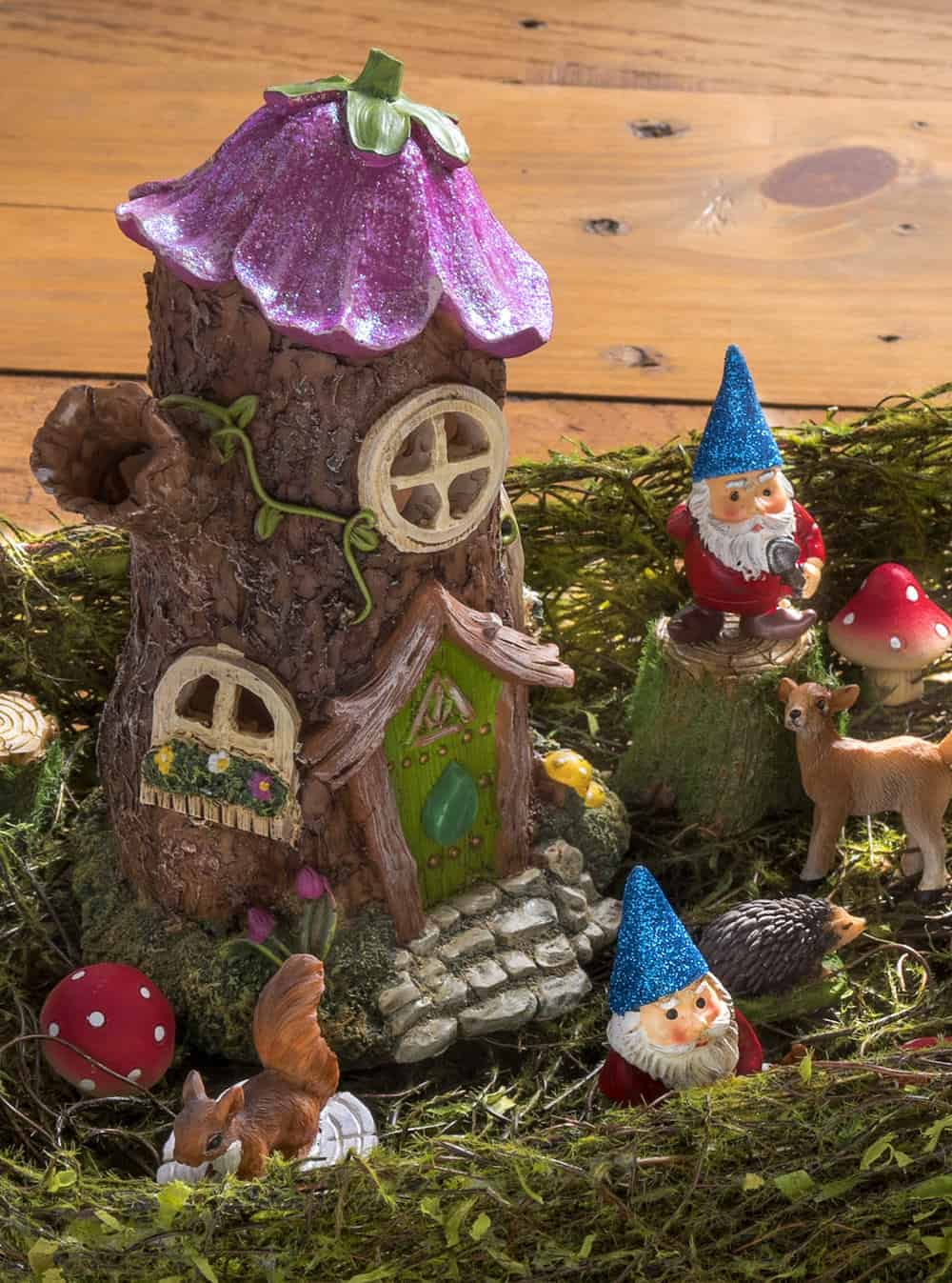 Fullsize Of Fairy Garden Pictures