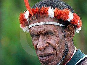 papuan-man-wamena-papua-indonesia-9342261