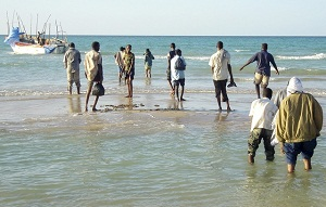 Illegal immigrants from Somalia walk to a vessel in port town of Bossaso