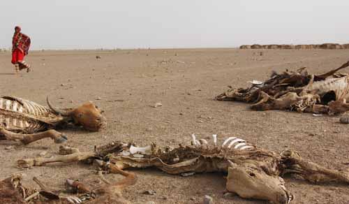 جفاف-المياه-في-اثيوبيا