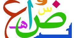 أوضاع اللغة العربية في الصومالقراءة تاريخية لعوامل الازدهار والانحسار (6)