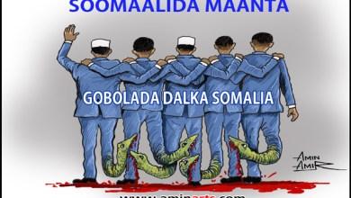 siyaasadda-Soomaaliya-2