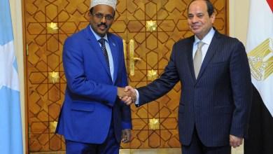 285246-السيسى-والرئيس-الصومالى