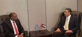 رئيس الوزراء يلتقى وزير الخارجية الإماراتي في نيويورك