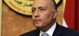 مصر: نقف مع حكومة وشعب الصومال في مواجهة الإرهاب