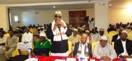التيار الإسلامي الصومالي بين الاندماج والتعاون : ( الاعتصام والدم الجديد أنموذجا )