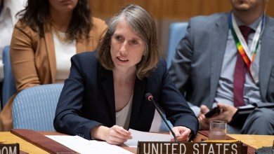 Security Council meeting on The situation in the Middle East.  USA