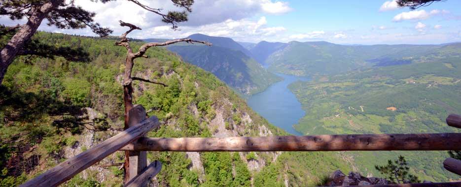 Planina Tara