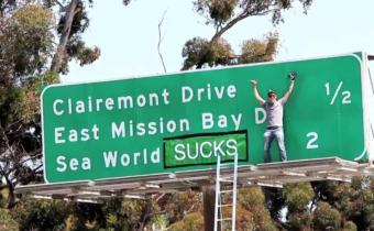 steve-o-sea-world-stunt
