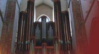 ikonka_organy Katedra