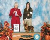 Bingley takes Reserve Winners Dog in Alvarado.