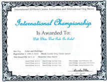 Duke INT Champion Certificate web