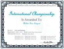 Luna INT Champion Certificate Web
