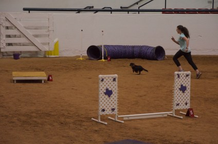 Kelly Fort Worth Friday Agility 4