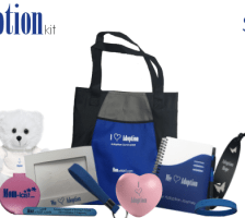 TheAdoptionKit: An Adoption Survival Kit for the Adoption Process