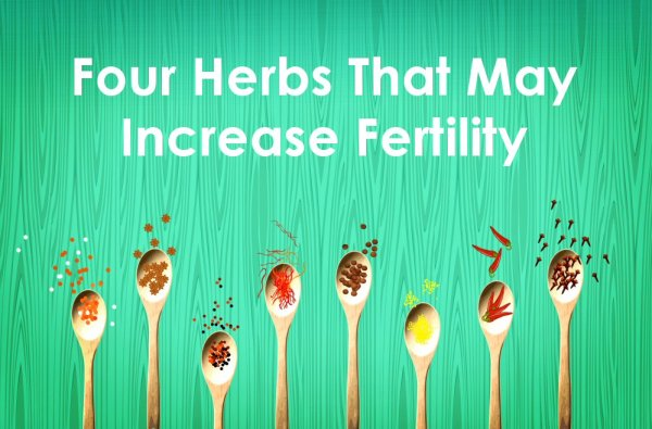 Increase Fertility