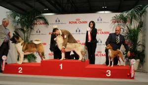 winning Best Of Group 3 at his absolutely first show