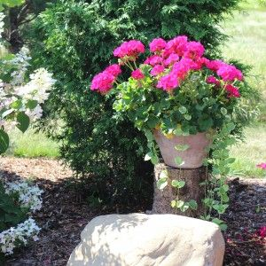 Pretty Planters (20 of them) – plan for next year!