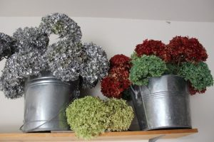 Storing my spray painted hydrangeas.