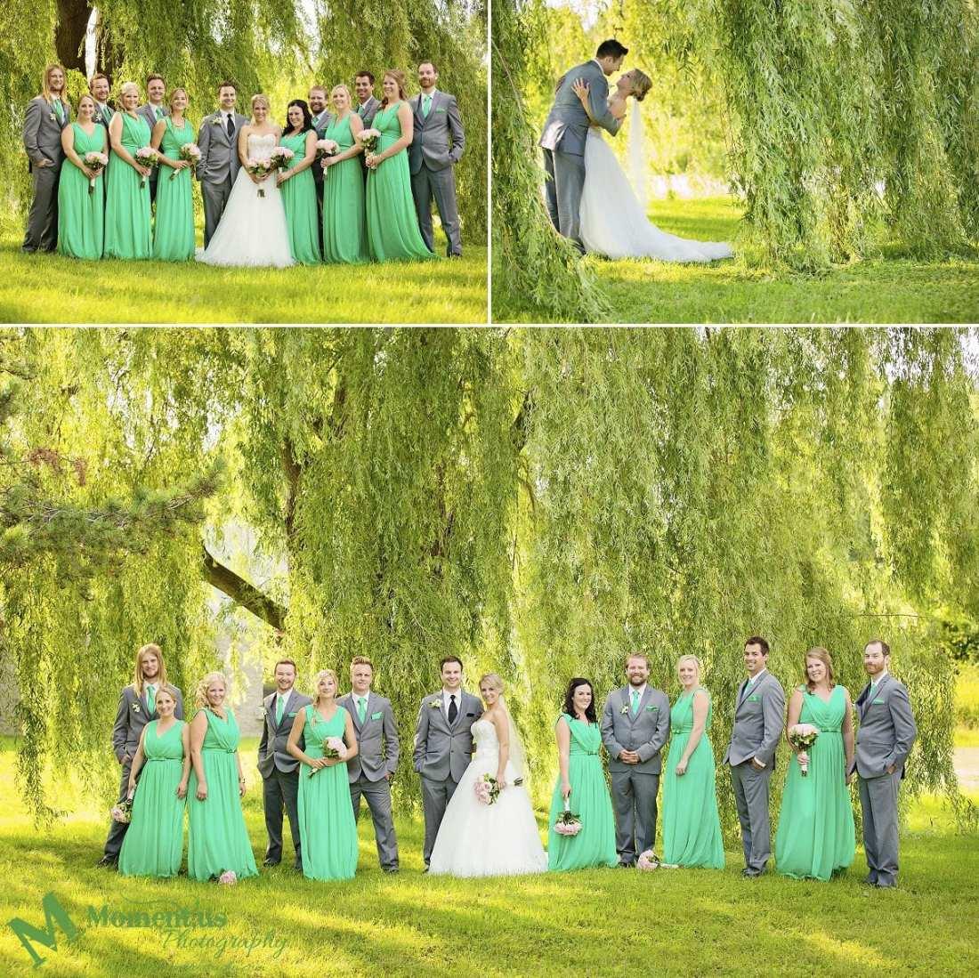 Elegant Cornwall wedding - wedding party under willow