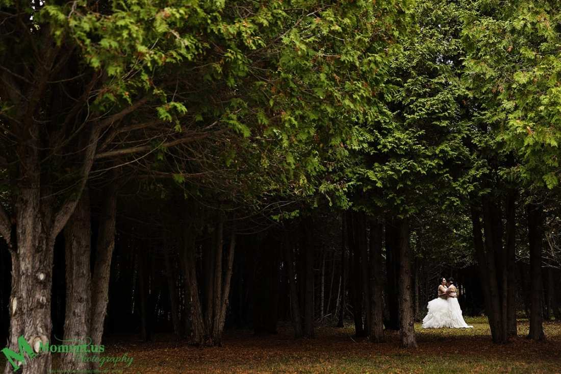 Alexandria wedding - brides cuddling in forest