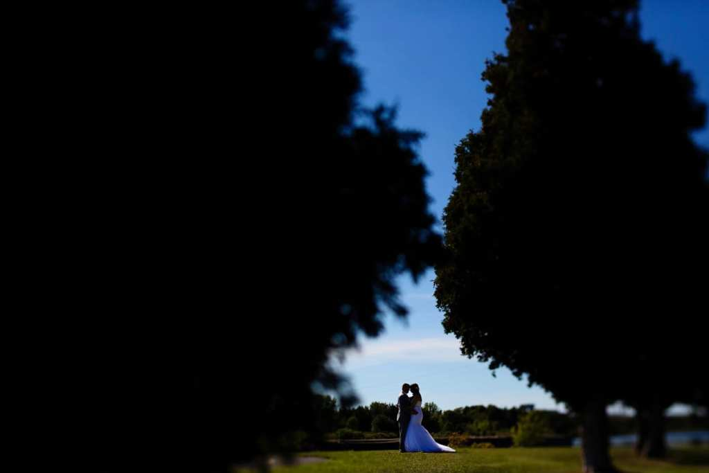 Bride and groom framed by cedars on sunny day
