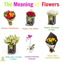The Meaning of Giving Flowers