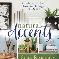 Natural Accents Book Review - #makeithappenbloghop