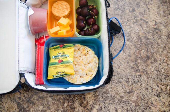 Anatomy of a School Lunch