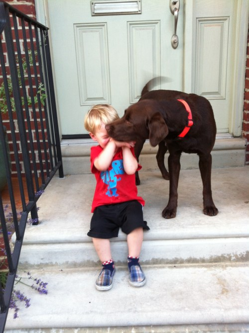 dog_kisses