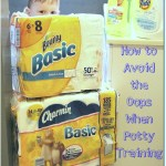 Potty Training a Toddler: How to Avoid the Oops