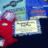 August 2014 Barkbox Review & Coupon - Dog Subscription Box