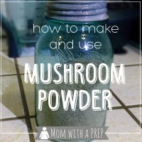 How to Make and use Mushroom Powder
