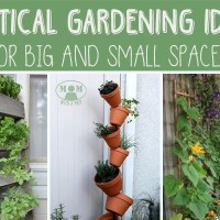 Vertical Gardening Ideas for Big or Small Spaces