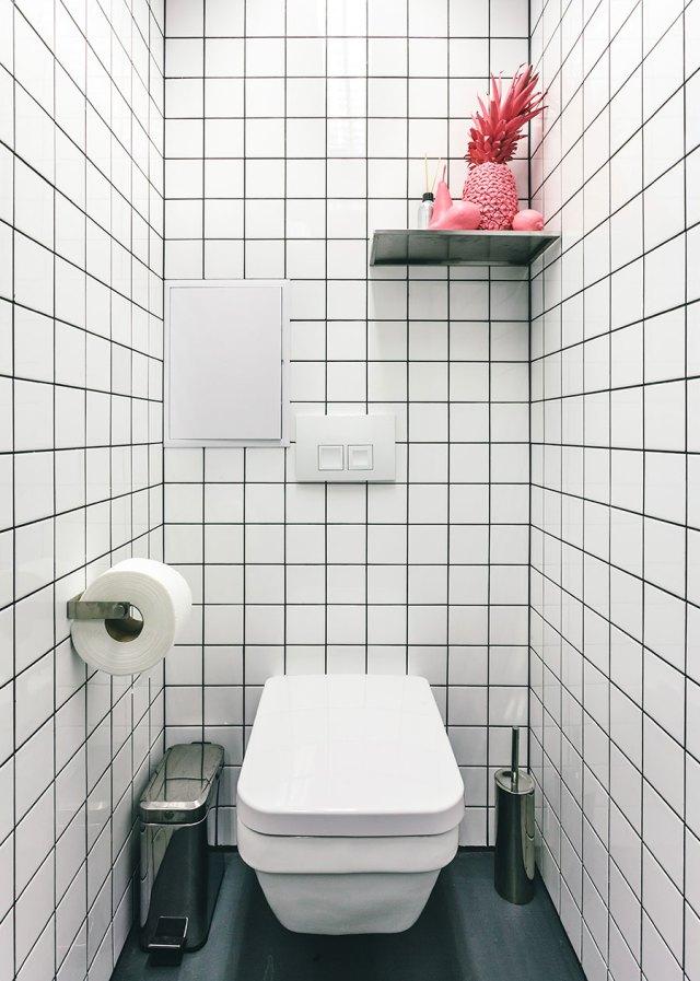 orang utan toilettes