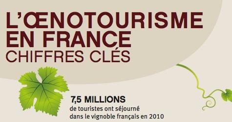 tourisme du vin en France vignoble
