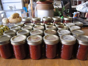 Our finished jars of tomatoes, ready to go into the cupboard.