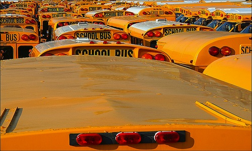 Public or private school busses