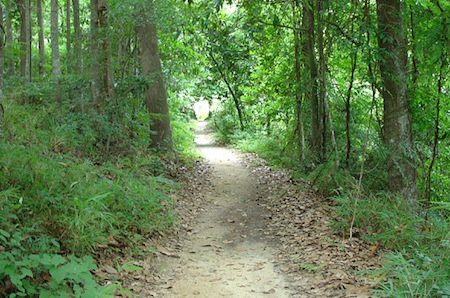 nature trails 14 WAYS TO LIVE LUXURIOUSLY WITHOUT (NECESSARILY) SPENDING A LOT OF MONEY.