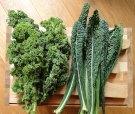 Blue Scotch Kale and Lacinato Kale