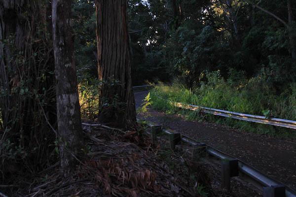 Running path, pupukea