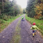 Forest Fun and Conker Foraging
