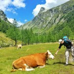 How to Experience Adventure in the Austrian Alps