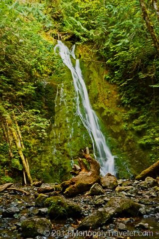 Madison Falls by the Elwha River
